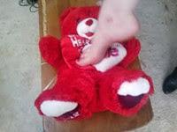 bear_arches